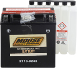 Moose Utility Division AGM Maintenance-Free Battery (Cross Ref YTX20CH-BS) 2113-0243