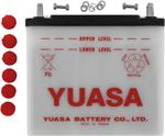 Yuasa Conventional Battery (12N24-3) YUAM2224D