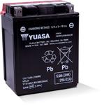 Yuasa Fresh Pack High Performance Maintenance-Free AGM Battery (YTX14AH-BS) YUAM62H4A